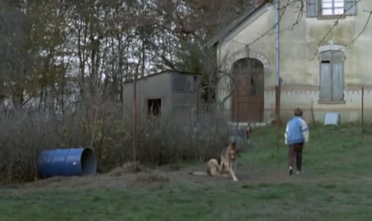 Court métrage La peur, petit chasseur