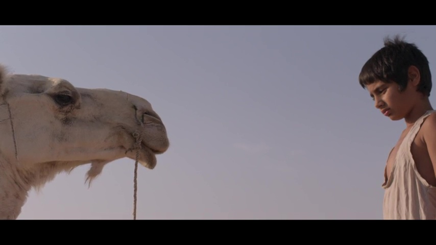 Court métrage L'enfant chameau de Chabname Zariâb (2018)